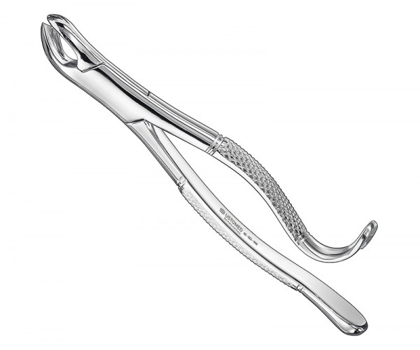 Extracting forceps, american patt., sz.24